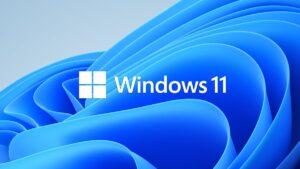 windows 11 logo | Business Communications | Business IT Port Elizabeth